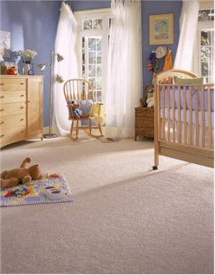 Host Carpet Dry Cleaning Safe for Kids & Pets
